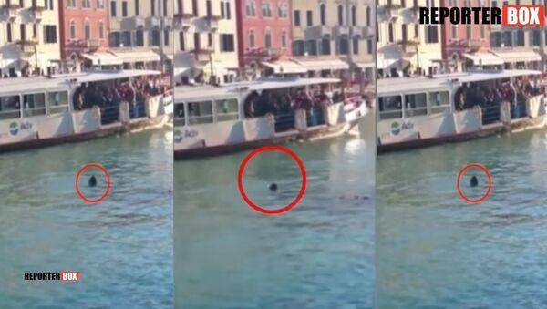 Un jeune réfugié africain s'est noyé à Venise sous les moqueries des badauds - Sputnik France