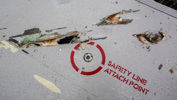 Поисковые работы на месте крушения малазийского лайнера Boeing 777 в районе Шахтерска - Sputnik France