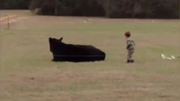 Cet enfant gagne un pari à 20 USD, en sautant sur le dos d'un bœuf - Sputnik France