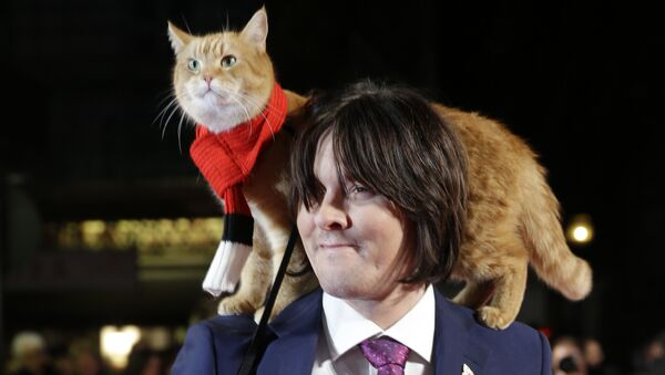 Ces chats qui ont fait l'histoire - Sputnik France
