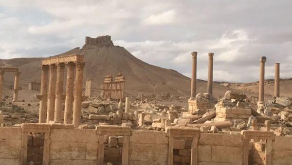 Историко-архитектурный комплекс Древней Пальмиры в сирийской провинции Хомс - Sputnik France