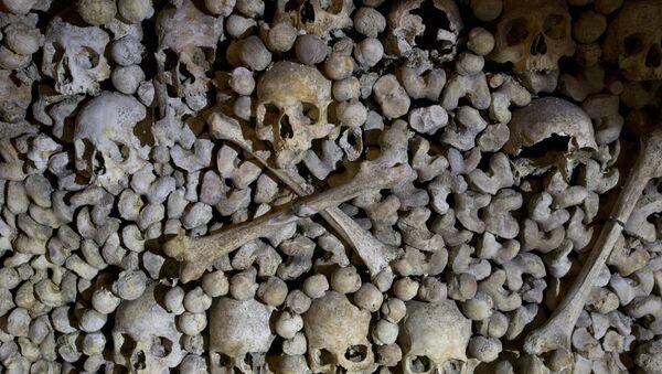 Crânes et os sont empilés aux Catacombes à Paris, France - Sputnik France