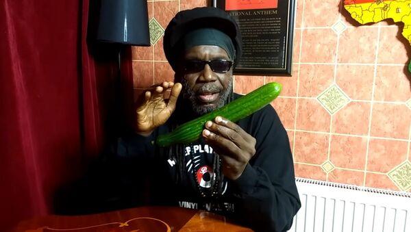 Un artiste jamaïquain chante les bienfaits du concombre dans une vidéo virale (vidéo) - Sputnik France