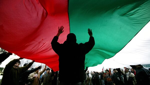 Protestors hold up the Bulgarian flag, outside the Bulgarian parliament in Sofia on January 15, 2009. - Sputnik France