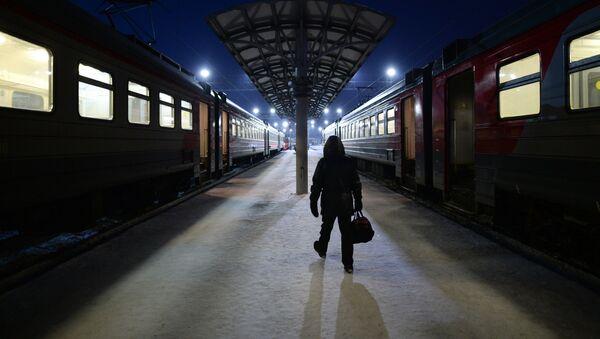 des trains (image d'illustration) - Sputnik France