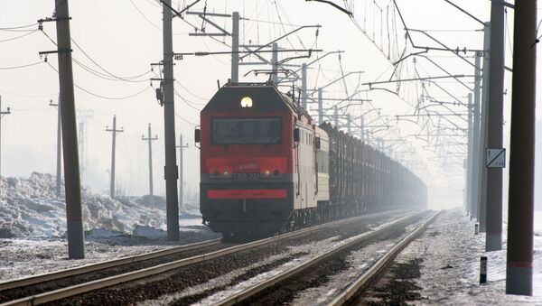 Le train de marchandises sur l'une des branches du Transsibérien dans la région de Novossibirsk - Sputnik France