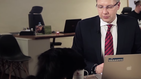 Le chat aide le maire de Riga à répondre aux questions - Sputnik France
