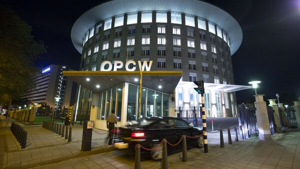 Le siège de l'OIAC à La Haye - Sputnik France