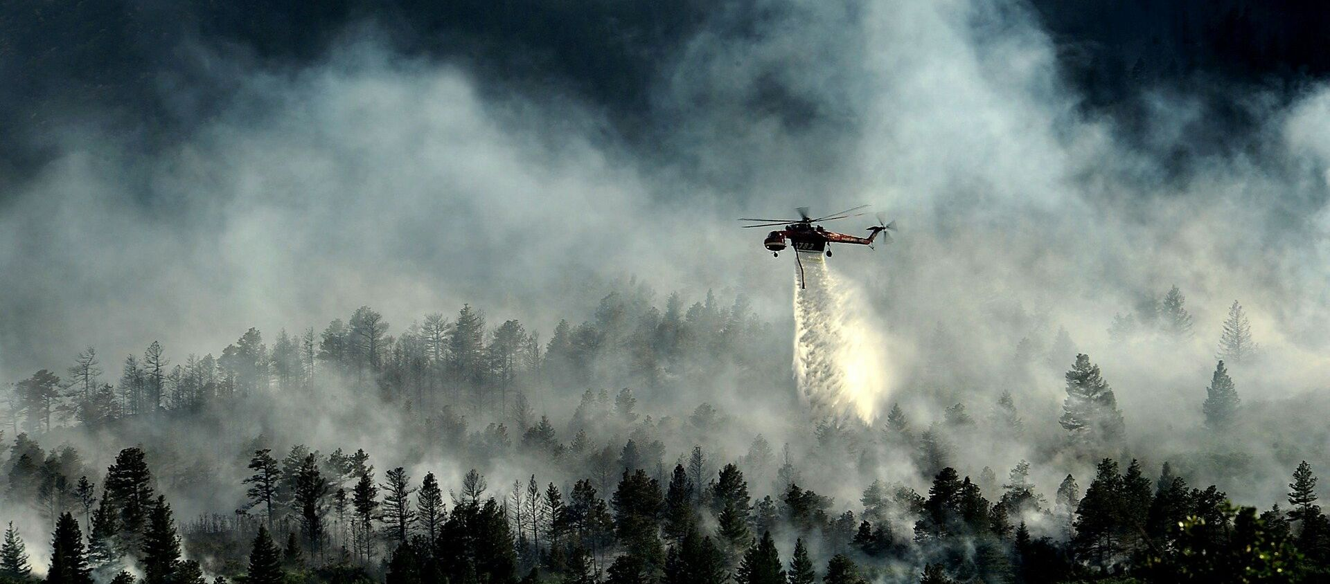 Un puissant feu détruit la forêt autour de la centrale de Fukushima - Sputnik France, 1920, 02.07.2021