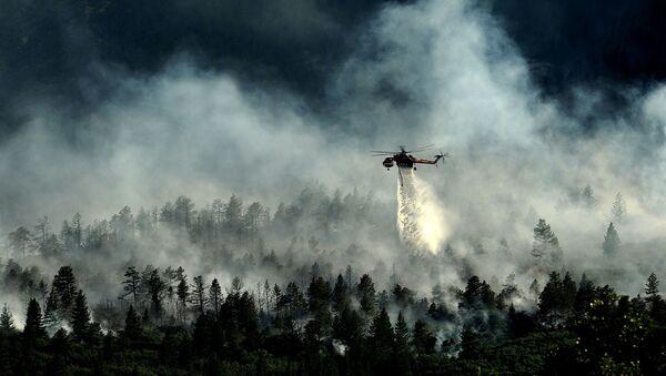 Un puissant feu détruit la forêt autour de la centrale de Fukushima - Sputnik France