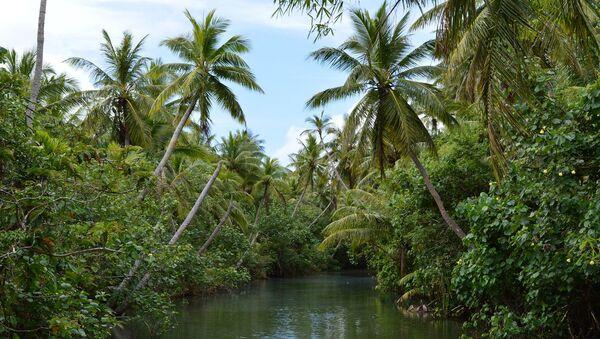 Остров Гуам: река Талофофо, которая рассекает джунгли на острове пополам - Sputnik France