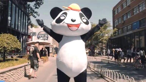 Un panda dansant dans le clip qui vante «La nouvelle route de la Soie» - Sputnik France