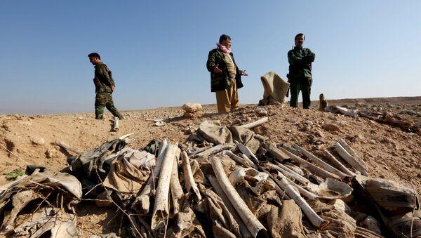 Irak: cinq charniers de Yézidis massacrés par Daech découverts à Sinjar - Sputnik France