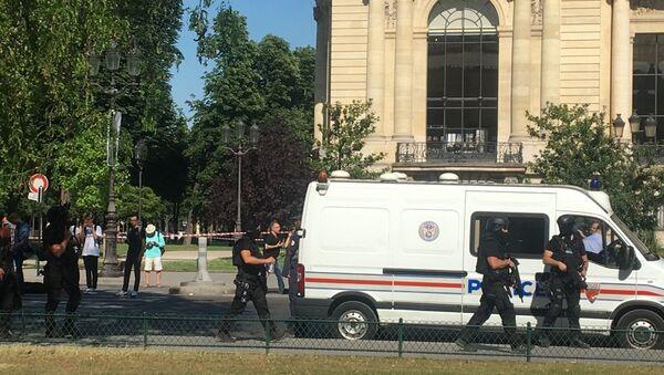Des policiers sur les Champs-Elysees - Sputnik France