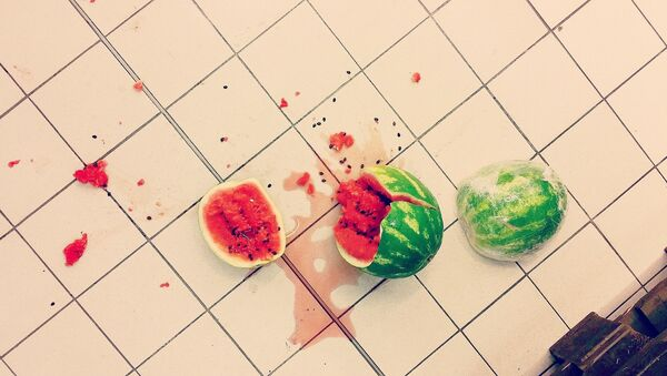 Watermelon - Sputnik France