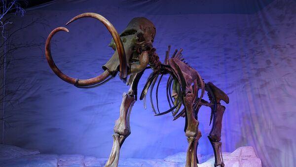 Mammoth - Sputnik France