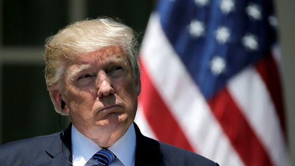 Donald Trump - Sputnik France