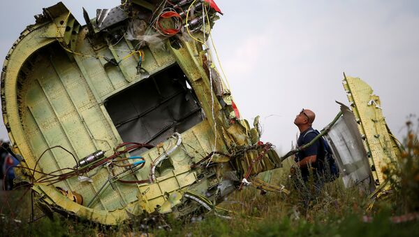 Lieu du crash du vol MH17 - Sputnik France