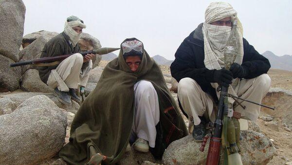 Des talibans en Afghanistan - Sputnik France