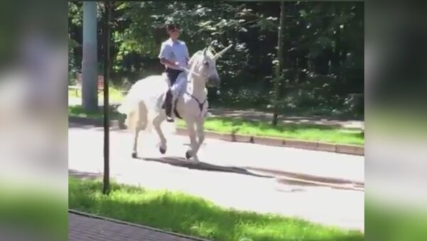 The policeman is riding a unicorn in Russia | Полицейский едет на единороге в России - Sputnik France