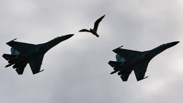 Su-27 Flanker fighters fly over Palace Square in during a rehearsal of the Victory Parade in St. Petersburg - Sputnik France