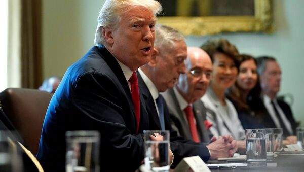 U.S. President Donald Trump speaks during a cabinet meeting at the White House in Washington - Sputnik France