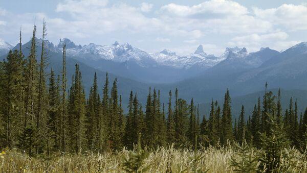 Yergaki range in the West Sayany mountain range, southern Siberia. (File) - Sputnik France