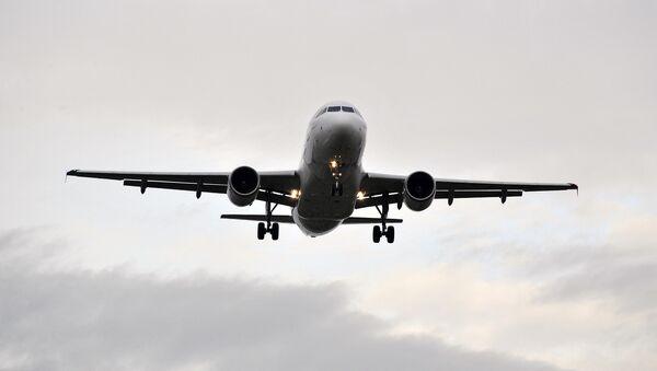 Un Airbus A319 d'Air France - Sputnik France