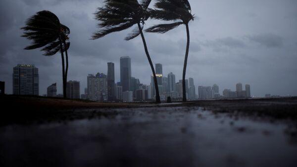 Irma in Florida - Sputnik France