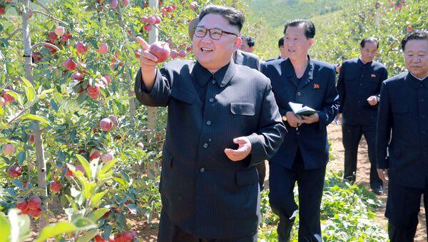 Kim Jong-un visite une exploitation fruitière dans la province du Hwanghae du Sud - Sputnik France