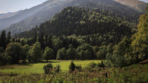 Caucase russe - Sputnik France