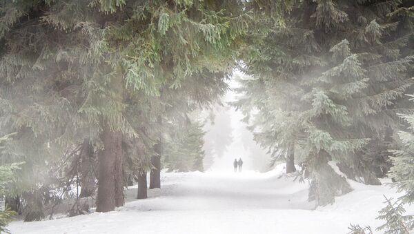 Tempête de neige - Sputnik France