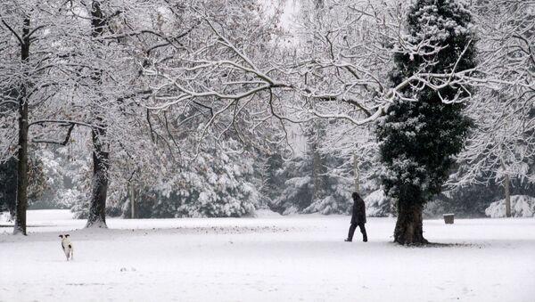Strasbourg snow - Sputnik France