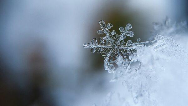 flocon de neige - Sputnik France