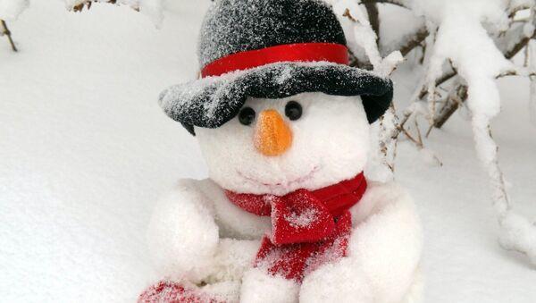 un bonhomme de neige - Sputnik France
