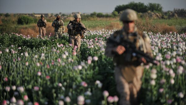 US Marines and Gunnary Sergeant Nate Cosby (R), Staff Sergeant Josh Lacey (2nd R) and Navy Hospitalman 2 Daniel Holmberg (L) from Border Adviser Team (BAT) and Explosive Ordance Disposal (EOD) 1st and 2nd Marine Division (Forward) walk through opium poppy field at Maranjan village in Helmand province on April 25, 2011 as they take patrol with their team and Afghanistan National Police - Sputnik France