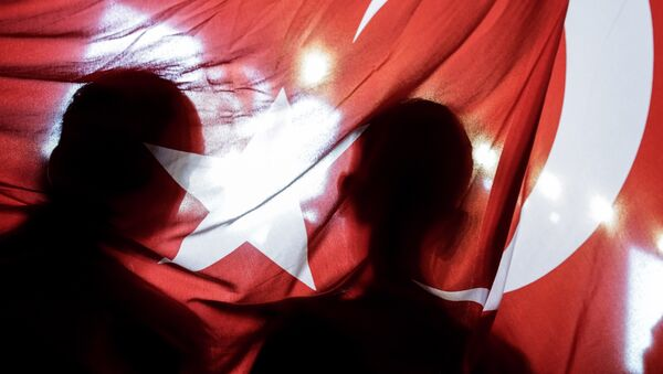 Pro-Erdogan-Demonstranten auf dem Taksim-Platz in Istanbul - Sputnik France