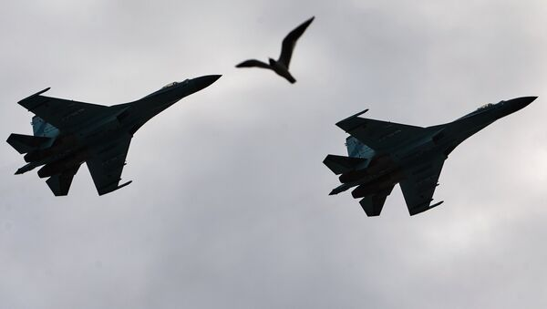 Chasseurs Su-27 - Sputnik France
