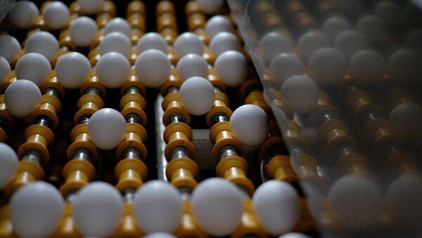 œufs (image d'illustration) - Sputnik France