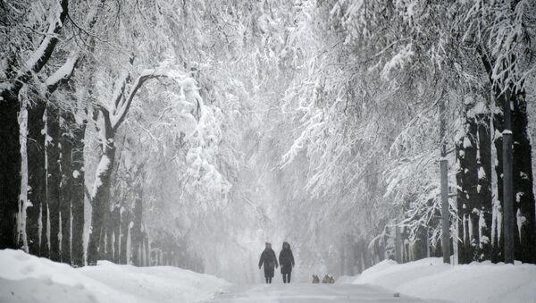 Заснеженная аллея на Воробьевых горах во время снегопада - Sputnik France