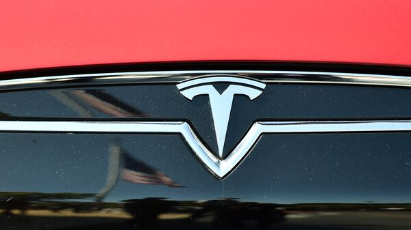 An American flag is reflected in the grill of a Tesla Model S - Sputnik France