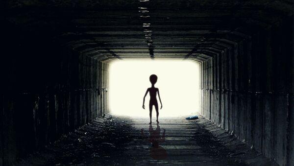 Un extraterrestre (imágen referencial) - Sputnik France