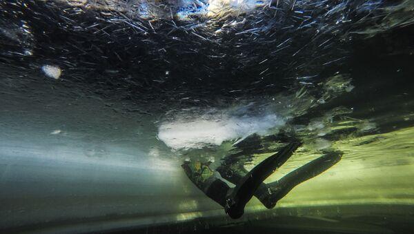 une plongée (image d'illustration) - Sputnik France