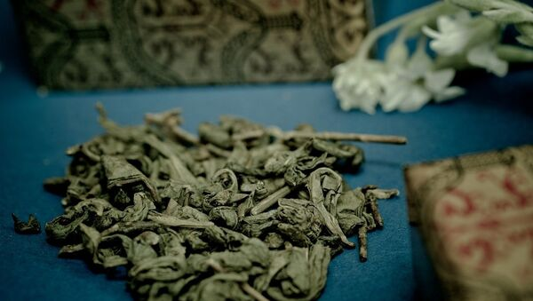 Des feuilles de thé vert - Sputnik France