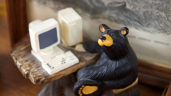 Russian hacker bear - Sputnik France