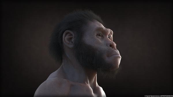 Extrait du film d'animation Homo naledi: Rencontre entre deux mondes - Sputnik France