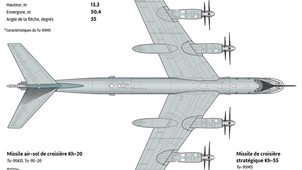 Bombardier stratégique Tu-95 - Sputnik France