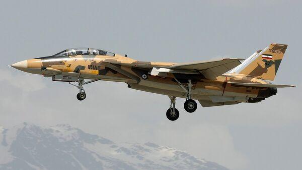 Un F-14A iranien - Sputnik France
