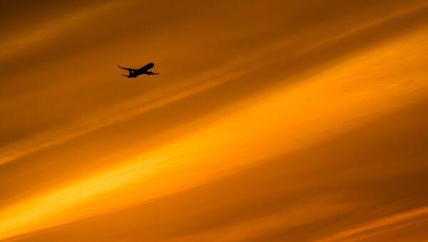 Un avion dans le ciel - Sputnik France
