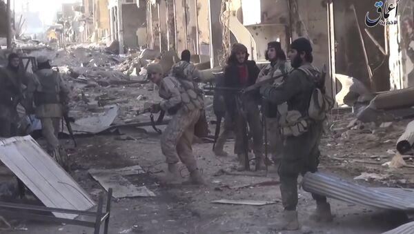 Daech en Syrie - Sputnik France